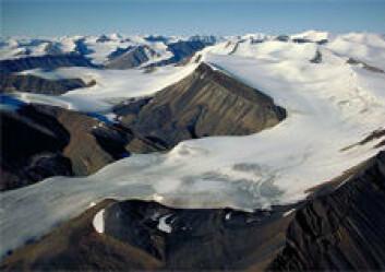 Axel Heiberg Island i kanadiske Arktis kan vere ein moderne analog til den polare ørkenen i Rondane og Dovre under siste istid. Her kan planter ha klart seg i dei isfrie sørhellingane. (Foto: Jürg Alean)