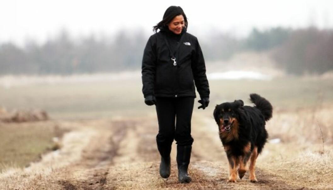 Det gir en minst like god helseeffekt å går en litt rask tur som å halsbrekke avanserte treningsopplegg, vil kronikkforfatterne ha fram. (Foto: www.colorbox.no)