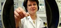 Studerer steikepanner med CSI-metoder