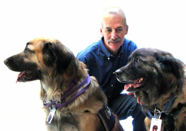 Donald Eigler med hundene sine, Neon (t.v.) og Argon (t.h). Eigler er en ivrig hundetrener. (Foto: Jenny Almaden)