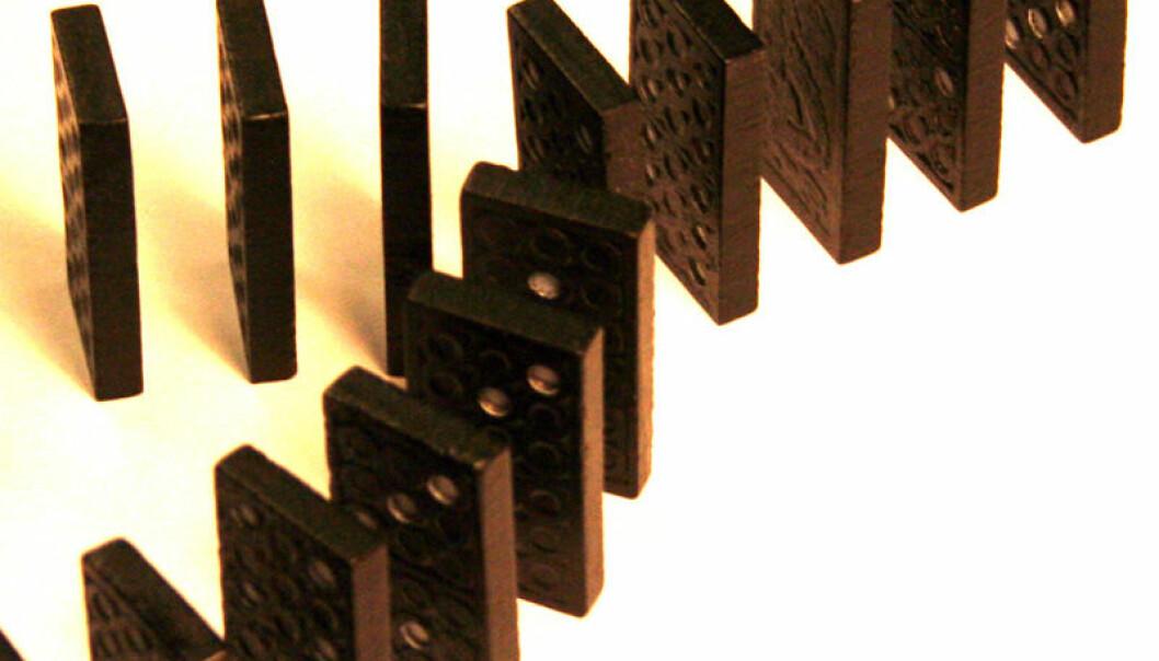 Domino-databrikker
