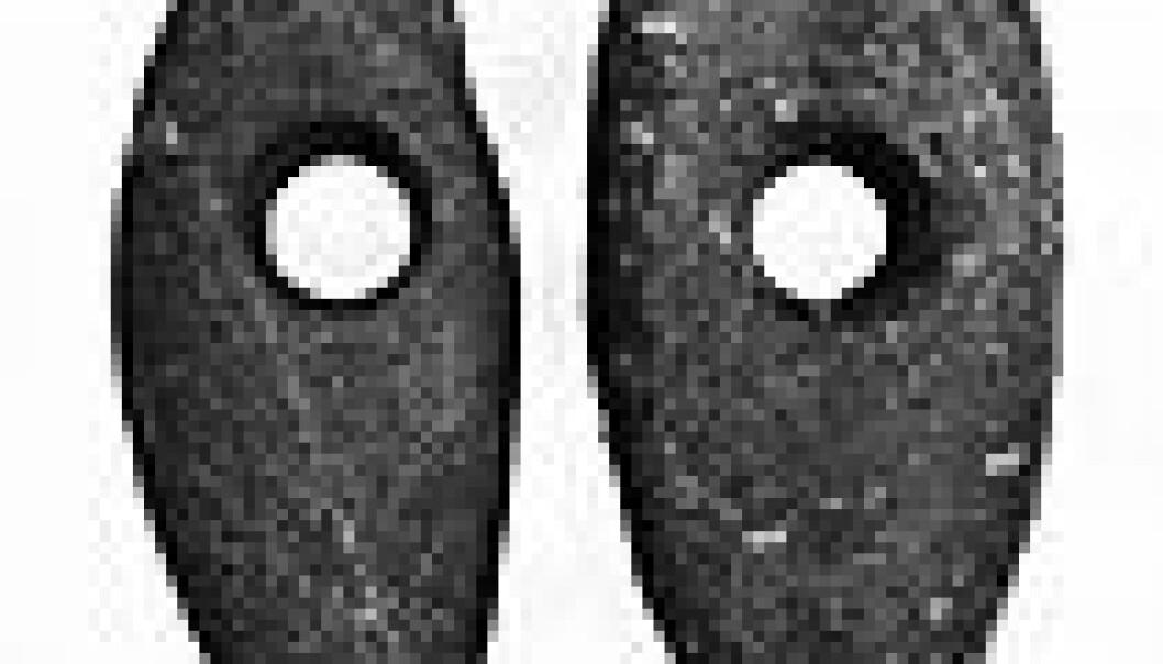 Skafthulløkser fra yngre steinalder (ca. 2000 f.Kr.) fra gården Skjeset Vestre, Vangsåsen i Hamar kommune, Hedmar. (Foto: Ørnulf Hjort-Sørensen, Kulturhistorisk museum, UiO)