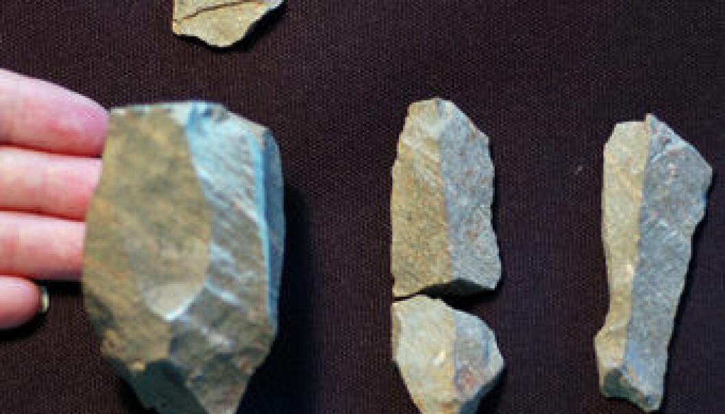 En steinkjerne nede til venstre, og tre av bladene som nettopp ble funnet i Kenya. (Foto: Cara Roure Johnson og Sally McBrearty/University of Connecticut)