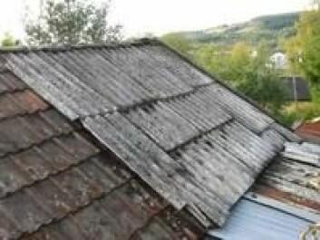 """""""Asbestholdige eternittplater på tak."""""""