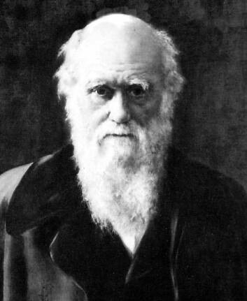 """""""Moltemyr Skole skriver også """"moderne darwinister står for at det første livet ble utviklet ved en uintelligent tilfeldighet, men dette har de heller ikke klart å bevise."""" (Illustrasjon: Wikimedia Commons)"""""""