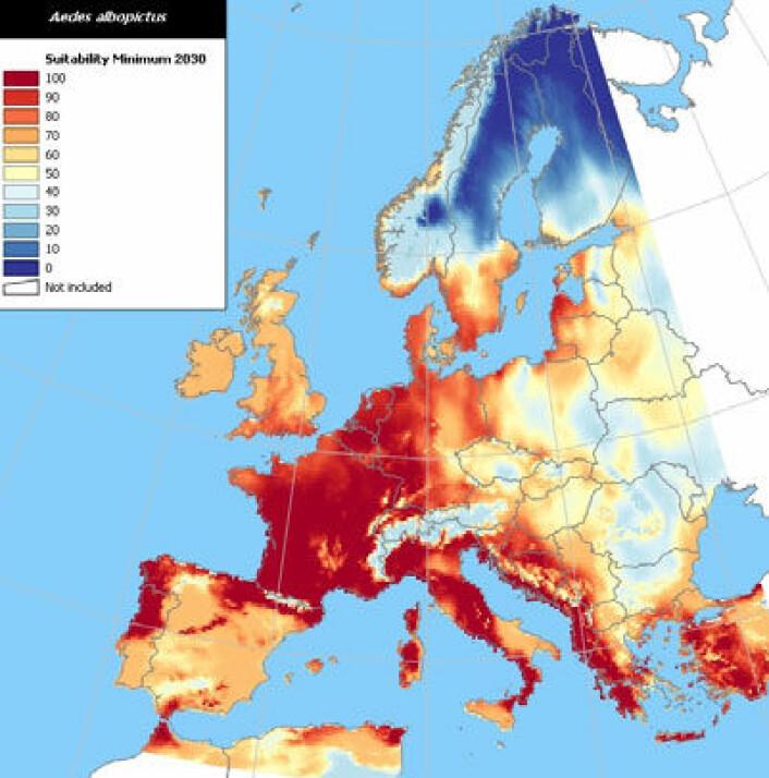 I 2030 vil tigermyggen høyst sannsynlig kunne overleve vintrene i store deler av Europa. Kartet er basert på de mest moderate spådommene for temperaturstigninger og nedbør i de kommende årene. (Kilde: European Center for Disease Control)