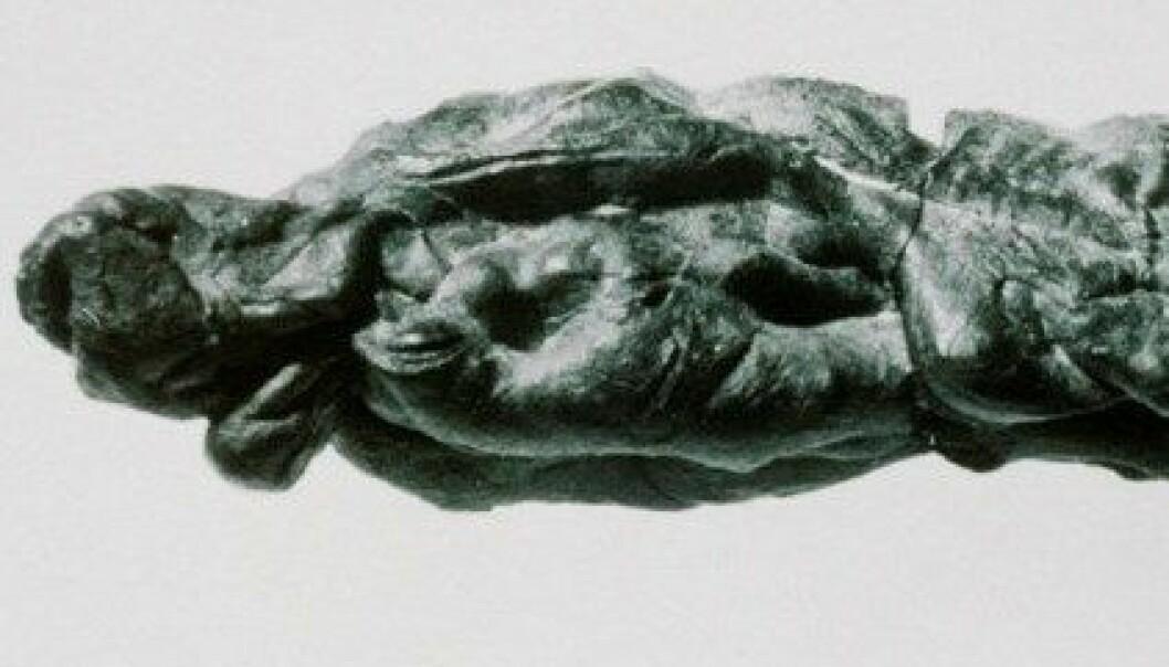 """En 28 mm lang """"tyggis"""" av bjørkebarktjære funnet  på en boplass fra eldre steinalder ca 1000 m.o.h. i Blåsjø-området i Setesdal Vesthei. (Foto: Arkeologisk museum, Universitetet i Stavanger)"""