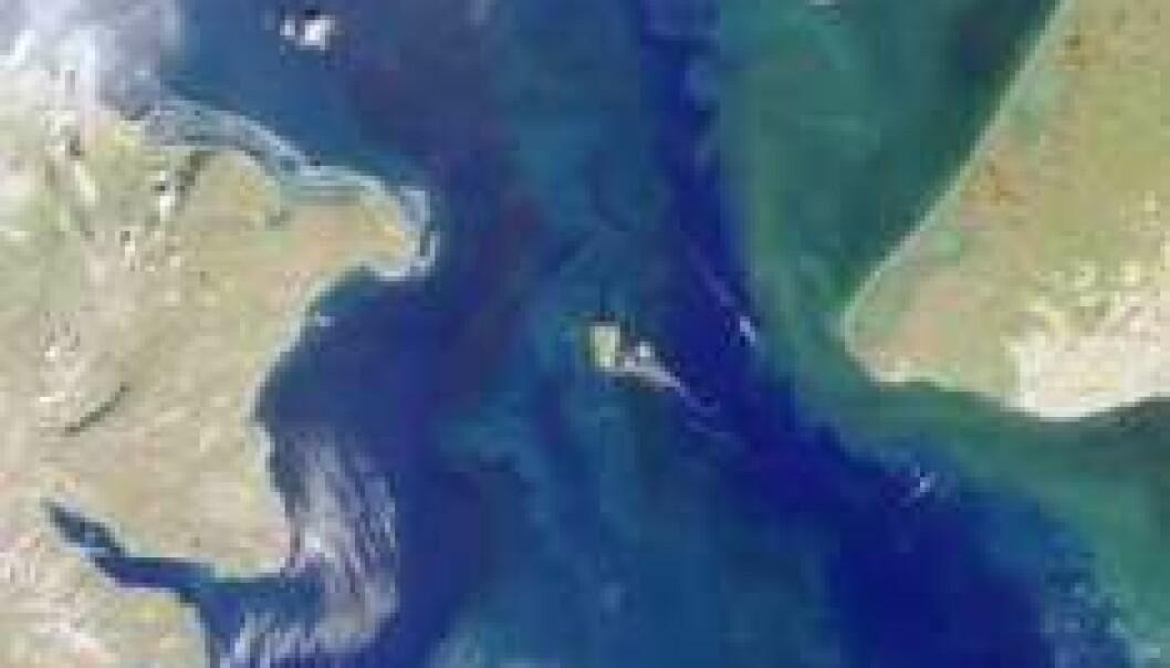 Beringstredet. (Foto: NASA/GSFC/JPL, MISR Team)