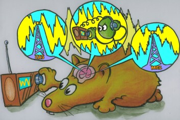 Hjernen stiller seg inn på bestemte frekvenser, akkurat som vi stiller inn radiokanal. (Illustrasjon: Håkon Fyhn)