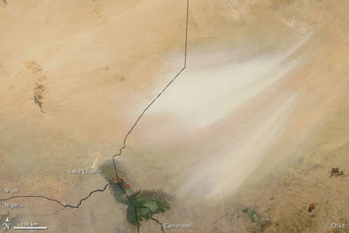 """På dette satellittbildet vises en sandstorm fra Bodélé-fordypningen i høyre del av bildet. Sandstormen sees som lyse """"penselstrøk"""" mot ørkenen. Landegrenser er påført i svart. Tsjadsjøen sees markert i grønt i nederste billedkant. Bildet er tatt i desember 2008. (Foto: NASA/MODIS Rapid Response Team, Goddard Space Flight Center)"""