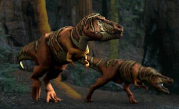 """""""Var det kanskje slik T-rexen så ut? Foreløpig er det en like god gjetning som alt annet. (Foto: Wikimedia Commons)"""""""
