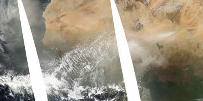 Sammensatt satelittbilde fra januar 1997 som viser Vest-Afrika. I den tredjedelen som er lengst til høyre sees Tsjad med en sandstorm markert som et lyst område i øvre del av bildet. Om vinteren går vindene oftest mot sørvest og deretter mot vest over Atlanterhavet. Støv fra sandstormene løftes opp og fraktes i samme retning over havet mot Sør-Amerika. (Foto: NASA/MODIS Rapid Response Team, Goddard Space Flight Center)