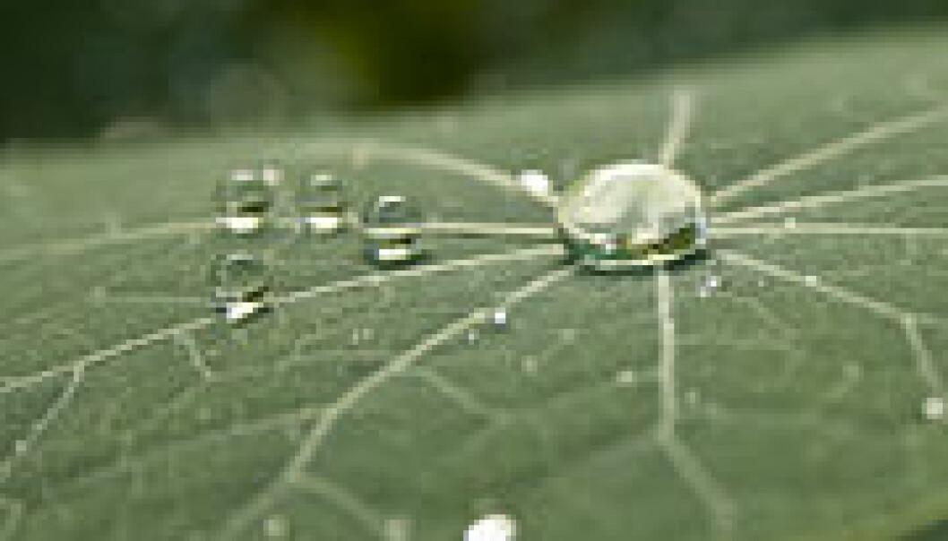 Ikke alle selskaper er så grønne som de gjerne vil fremstå som...