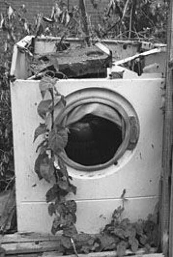 Ingenting varer evig, heller ikke vaskemaskiner. Men kan den resirskuleres?