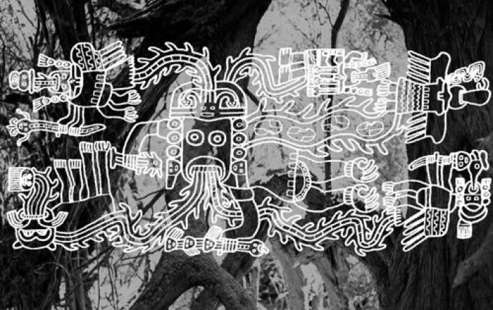 Huarango-treet kan ha vært så viktig for Nazca-sivilisasjonen at den formet kunsten dens. Noen mener å se treets buktende former i billedkunsten. Illustrasjonen består en typisk motiv hentet fra et Nazca-tekstil lagt oppe på et fotografi av et huarango-tre. Tegning av Ann Peters. (Illustrasjon: Ann Peters/David Beresford-Jones)