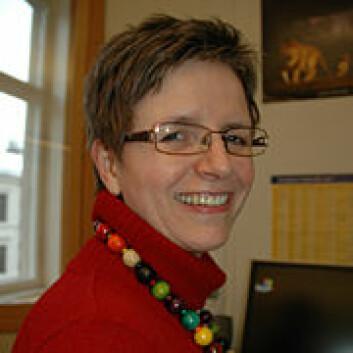 Beate Sjåfjell er førsteamanuensis ved Institutt for privatrett ved Det juridiske fakultet, UiO. Hun leder prosjektet Sustainable companies.
