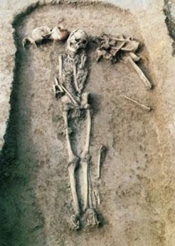 """""""Typisk grav fra Jiahu, fra yngre steinalder 6600-7000 år f.Kr. Med i graven har personen fått med seg keramikkbeholdere med forskjellige alkoholholdige drikker. Trolig brukte man alkohol i riter for å oppnå kontakt med de avdøde. (Foto: Zhiqing Zhang, Institute of Cultural Relics and Archaeology of Henan Province, Zhengzhou, China)"""""""