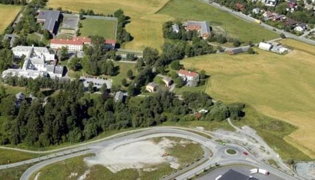 Det aktuelle området på Brøset er i dag eid av Staten og Sør-Trøndelag Fylkeskommune. Planen er å etablere 1200 boliger. Området ble i 2007 definert som et framtidig «bærekraftig område» av Trondheim kommune. (Foto: Trondheim kommune)