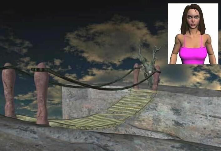 De mannlige deltakerne gikk raskere over den gufne virtuelle hengebroen når de ble bivånet av en avatarkvinne, samtidig som en kvinnelig forsker observerte forsøket. (Foto: Jeroen Derks, Journal of Evolutionary Psychology)