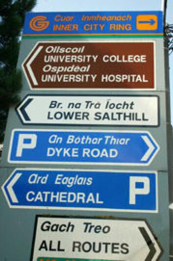 Irsk er førstespråket i Irland. Likevel dominerer engelsk, slik disse veiskiltene viser. (Foto: mentalpropell.com)