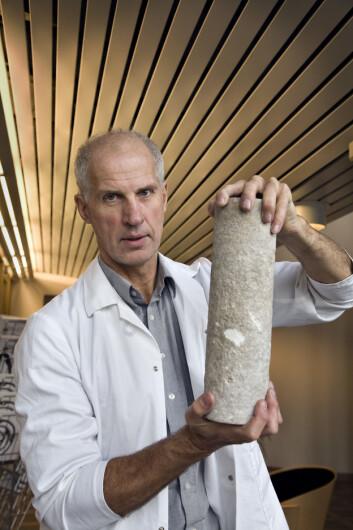 Erik Lindeberg leder arbeidet med å kartlegge lagringskapasiteten til Utsira-formasjonen i detalj. Her holder han opp en kjerneprøve, som er med på å danne grunnlaget for kartleggingen. (Foto: Sintef)