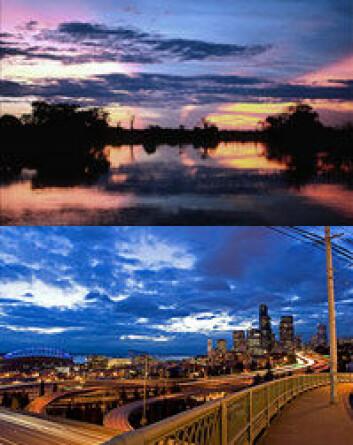 Her er to av bildene - et bylandskap og et naturlandskap - som ble brukt i forsøket. (Foto: University of Rochester)