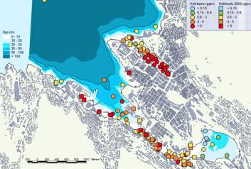 """Kvikksølv i sediment i Bergen havn. (Illustrasjon fra rapporten """"Tiltaksplan for Bergen havn"""")"""
