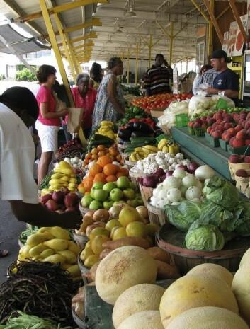 Bondens market i Jackson, Mississippi (Foto: Natalie Maynor/Flickr Creative Commons)