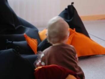 Trekantede puter kan ta initiativ til å leke. (Foto: Birgitta Cappelen)