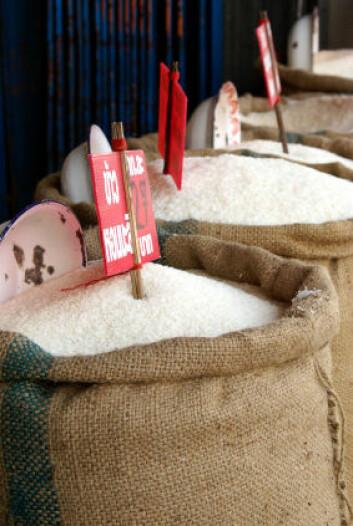 Salg av ris i Thailand. (Foto: iStockphoto)