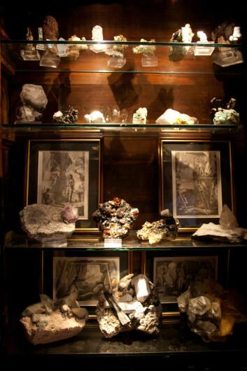 Huset til Hurum og Frøyland er fullt av steiner. Her er noen av dem, pent utstilt i et vitrineskap. (Foto: Ingrid Spilde)