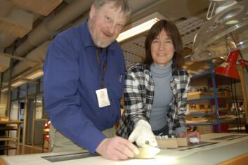 Eva Thate og Olle Hemdorff forsker på funn av eldre gjenstander i yngre graver. (Arkeologisk museum, UiS)