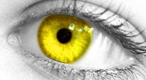 Spør en forsker: Hvorfor ikke gule øyne?