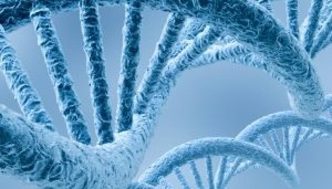 Førstørrelse av DNA-molekyl. (Illustrasjonsfoto: iStockphoto)