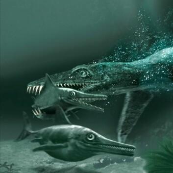 """""""""""Monsterøgla"""", pliosaurus og fiskeøglene. (Illustrasjon: Tor Sponga, BT/ Naturhistorisk museum, Universitetet i Oslo)"""""""
