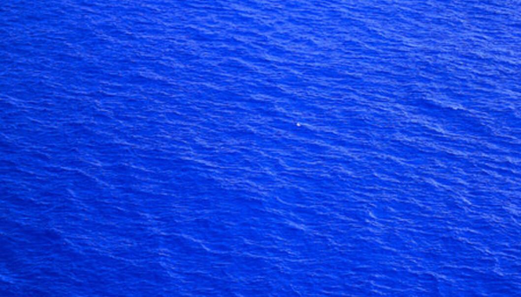 Havet på vekten