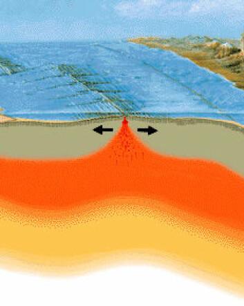 Figuren viser hvordan lava fra dypt nede i mantelen strømmer mot overflaten og bryter gjennom jordskorpen i en sone der to kontinentalplater driver fra hverandre, som på Island. (Illustrasjon: United States Geological Survey, bearbeidet)
