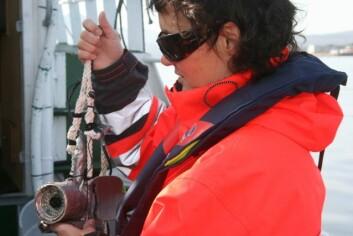 Havforsker ved Akvaplan-niva, Nina Mari Jørgensen, bruker undervannskamera for å kartlegge omfanget av tareskog i Troms. Resultatet er magert. (Foto: Liv Røhnebæk Bjergene)