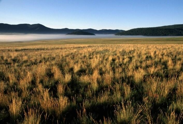 Oversikt over Valle Grande-området der boreprøvene ble tatt. Foto: Don Usner.