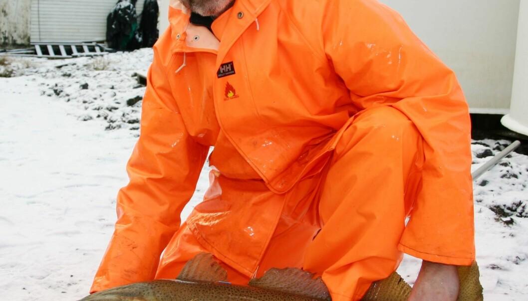 """""""Vi står foran gjennombrudd for torskeoppdrett, sier Oddvar Ottesen ved Høgskolen i Bodø. ( Foto: Svein-Arnt Adelsten Eriksen) høyre"""""""