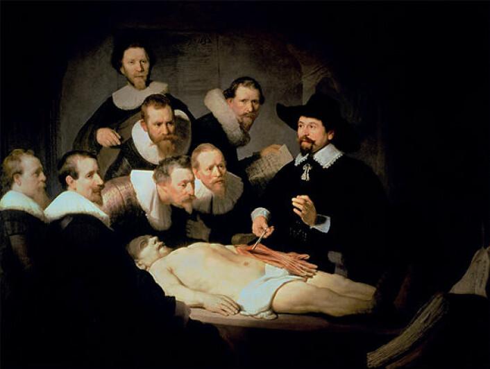 """I Rembrandts """"Doktor Tulps anatomileksikon"""" vises armens innside. Maleriet gjengir disseksjonen så nøyaktig at det ikke er tvil om hvilke sener og muskler som vises. Gjengitt med tillatelse fra Espen Stueland: Gjennom kjøttet (2009)."""