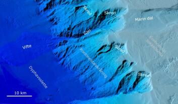 Utenfor Lofoten er kontinentalskråninga dramatisk med store gjel og spor etter utrasinger. Noen steder ligger vifteformede avsetninger fra rasene på dyphavssletta. (Illustrasjon: MAREANO)