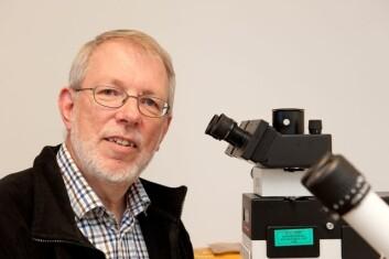 – Fra det skjulte livet blant røttene under jorda har vi funnet DNA fra sopp som vi ikke aner hvordan ser ut, sier professor Karl-Henrik Larsson. (Foto: Yngve Vogt)