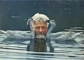 """""""Konrad Lorenz med sine gjess - som han arbeidet med hele livet. (Foto:Photobucket.com)"""""""