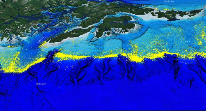 Store deler av fiskeriaktiviteten utenfor Lofoten og Vesterålen er lokalisert til geologiske landskapsformer. Figuren viser sporingsdata fra Fiskeridirektoratet for fiskefartøy over 24 meter siden år 2000. (Illustrasjon: MAREANO)