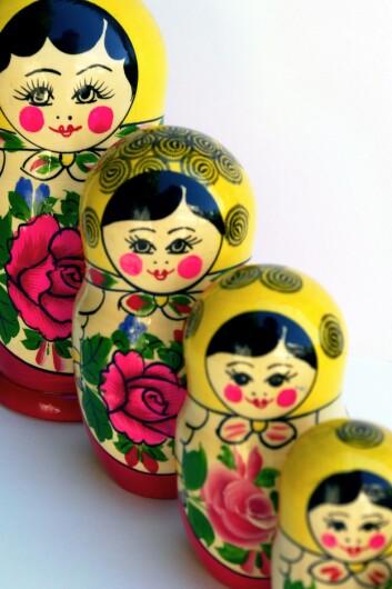 """""""Forskjellige nivåer av sosial atferd kan beskrives som en russisk matrjosjkadukke. (Foto:Colourbox)"""""""
