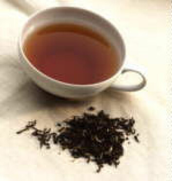 """I vestlige land drikker vi mest sort te."""
