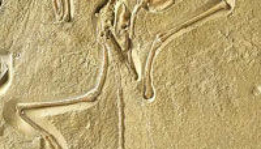"""""""London-eksemplaret av Archaeopteryxs - den kjøttetende reptilfuglen."""""""