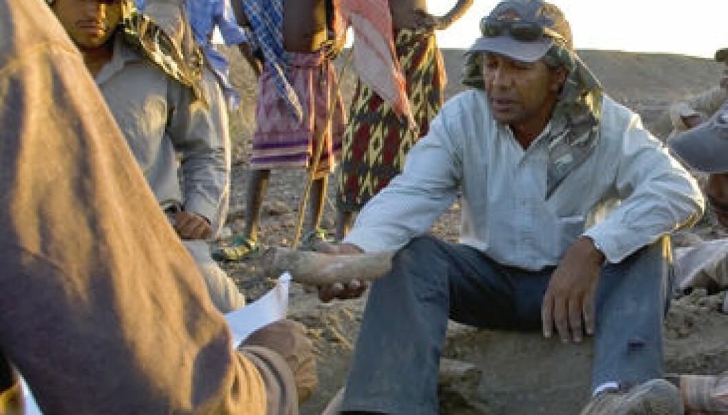 Yohannes Haile-Selassie (sittende midt på bildet) under feltarbeid i Etiopia. Den etiopiske forskeren har gjort en rekke viktige funn av fossile hominider i det som kalles menneskehetens vugge. (Foto: Liz Russel, The Cleveland Museum of Natural History)