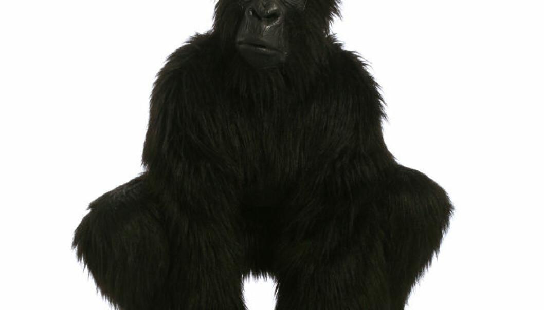 Den usynlige gorillaen